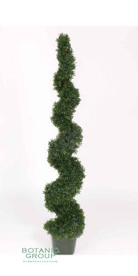 kunstpflanze buchsbaum buxus spirale pflanzenversand pflanzenhandel pflanzen. Black Bedroom Furniture Sets. Home Design Ideas