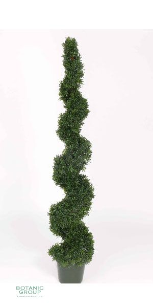 kunstpflanze buchsbaum buxus spirale pflanzenversand. Black Bedroom Furniture Sets. Home Design Ideas