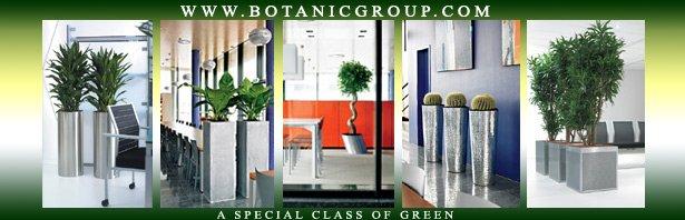 Pflanzen für die Innen- & Außenbegrünung, Pflanzgefäße ...