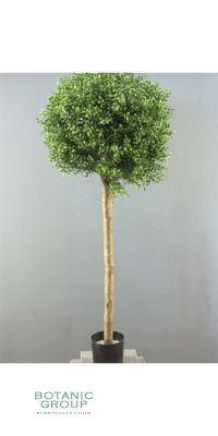 Artificial plant - buxus bol