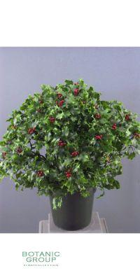 Kunstpflanze - Ilex-Pflanze
