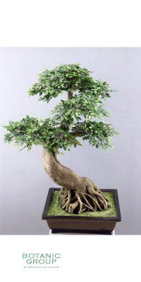 Artificial plant - bonsai iep