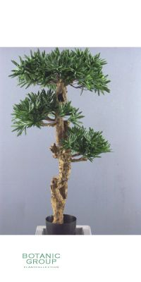 Kunstbaum - Bonsai