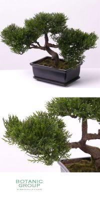 Kunstbaum - Bonsai ceder