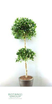 Kunstbaum - Lorbeerbaum, Kugelform x2, mit Beeren