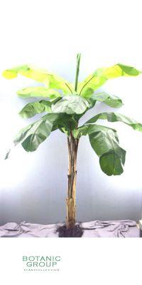 Kunstpalme - Bananenbaum