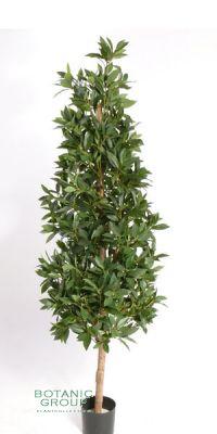 Kunstbaum, Kunstpflanze  - Lorbeer-Pyramide, Lorbeer