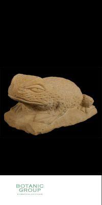Naturstein - Skulptur Frosch mittel
