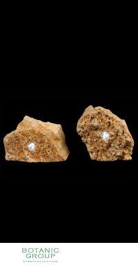 Naturstein - Leuchte Kalkstein poriös