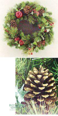 Christmas decoration - Christmas wreath, eelgrass/Poinsettia wre