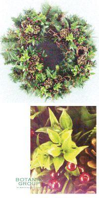 Weihnachtsdekoration - Weihnachtskranz, Zapfen, Rote Beeren, Zwe