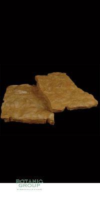 Sandstein - Bodenplatten mit Muschelstrucktur
