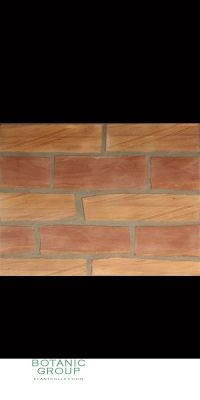 Sandstone - Floor Plates, Wood Decoration