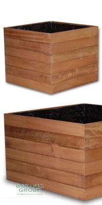Wood vessel Piazza