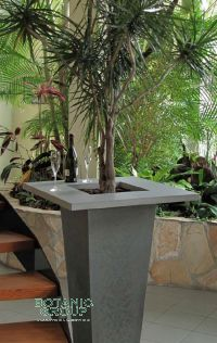 Concrete planter CONCEPT with edge