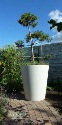 Concrete planter poly KONUS XXL