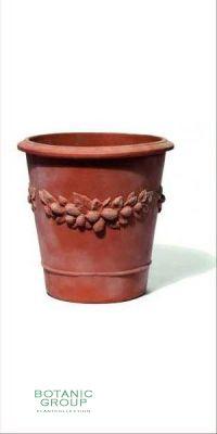 Terracotta Planter - Vaso Camelia frutta