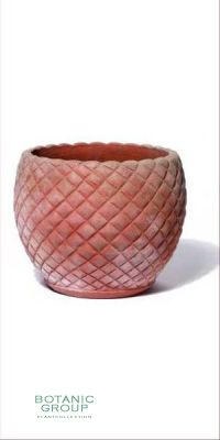 Terracotta Planter - Vaso Pinea