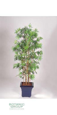 Artificial plant - Bambus Pseudosasa japonica