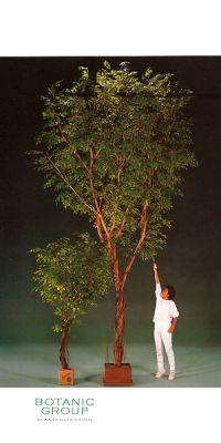 Artificial - Ficus gigant