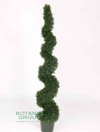 kunstpflanze buchsbaum buxus spirale. Black Bedroom Furniture Sets. Home Design Ideas
