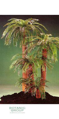 Kunstpflanze - Cycas Palme