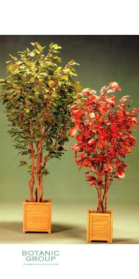 Kunstpflanze - Haselstrauch