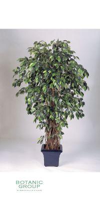Kunstpflanze - Ficus Liana deluxe