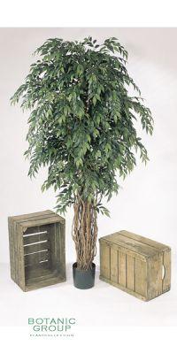 Kunstpflanze - Ficus Liana Highclass