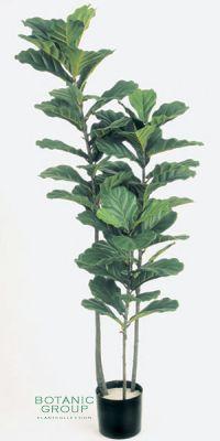 Kunstpflanze - Ficus Lyrata