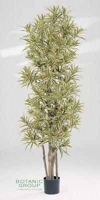 Kunstpflanze - Dracaena reflexa