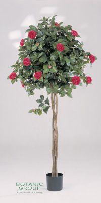 Kunstpflanze - Camelia japonica `Roger Hall`