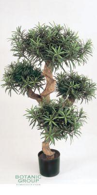 Kunstpflanze - Podocarpus bonsai III