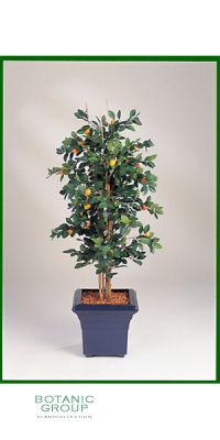 Artificial plant - Citrus calamondin