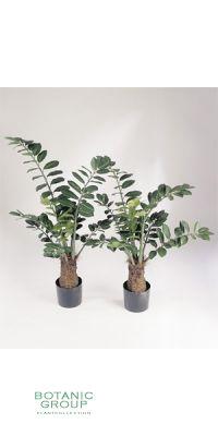 Kunstpflanze - Ficus smaragd