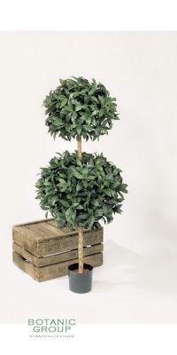 Kunstpflanze - Laurus nobillis mit 2 Kugeln