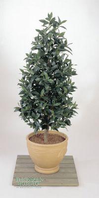 Kunstpflanze - Laurus nobilis pyramidalis