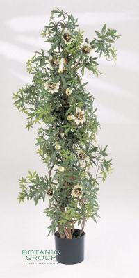 Artificial plant - Passiflora caerulea