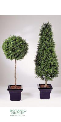 Kunstpflanze - Buchsbaum, Säule