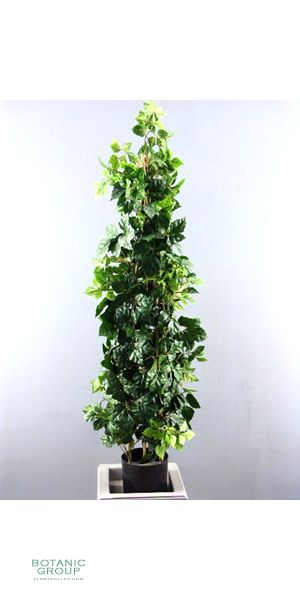 artificial plants trees - cissus climbing plant