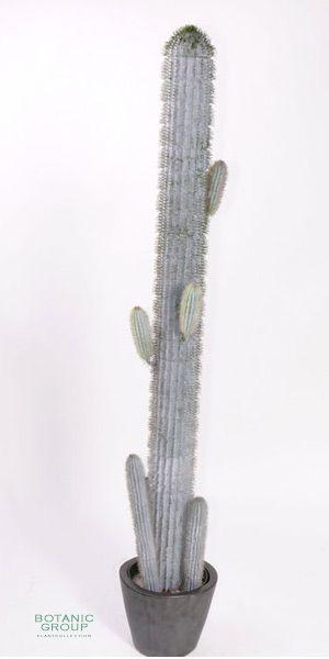 k nstlicher kaktus pachycereus pringlei kunstpflanzen. Black Bedroom Furniture Sets. Home Design Ideas