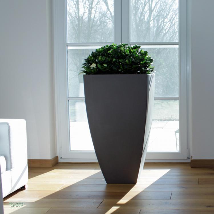 pflanzk bel natural line exklusive. Black Bedroom Furniture Sets. Home Design Ideas