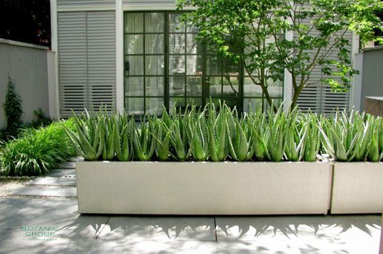 Aluminiumpflanzgefäß Designline Basic Cube Mit Füßen