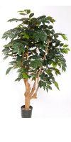 Kunstbaum - Kaffeebaum mit Stamm