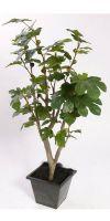 Kunstbaum - Feigenbaum, Ficus carica