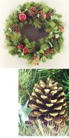 Christmas decoration - Christmas wreath, eelgrass/Poinsettia wre