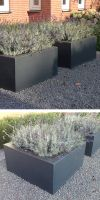 Glass-reinforced plastic planting vessel BC Designline Flat & L