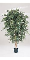 Artificial- Ficus  folia