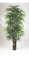 Artificial plant - Rhapis gracilis