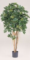 Artificial plant - Schefflera variegata
